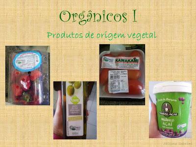 OrgC3A2nicosI