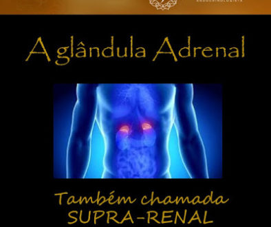 adrenal1introducao